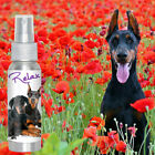DOBERMAN PINSCHER RELAX DOG AROMATHERAPY FOR THUNDER & FIREWORK FEAR, ANXIETY