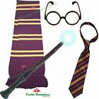 Bambini Harry Potter ispirato costume Gryfinndor Hogwarts outfit