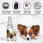 PAPILLON RELAX DOG AROMATHERAPY for Scared, Stressed Dogs - Thunderstorms, etc.