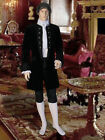 Renaissance or Baroque Frock Coat Handmade from Velvet and Taffeta