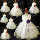 NLI8 Baby Infants Christening Wedding Holy Communion Formal Party Gowns Dresses