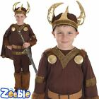Boys Viking Costume Kids Saxon Warrior Book Week Fancy Dress Outfit Age 6-12