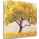 Tangletown Fine Art 'Apricot Tree' Print on Wrapped Canvas