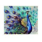 5D DIY Diamond Painting Animal Peacock Embroidery Home Decro Cross Crafts Stitch