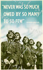 World War Two Battle of Britain The Few Memorial Poster A4/A3/A2/A1 Print
