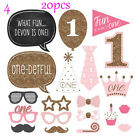 1st Birthday Photo Booth Props Boy Girl First Party Kids Decorations Favors
