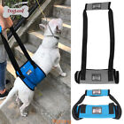 Dog Support Harness With Handle Older Injuries Weak Legs Canine Aid Harness BG15