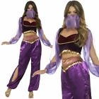 Womens Arabian Princess Costume Adult Jasmine Belly Dancer Fancy Dress Ladies