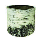 Surreal Planters Fake Realistic Birch Log Planter - Vertical 12 inch VB-10