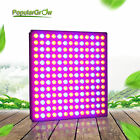 PopularGrow 45W LED Grow Light Panel Red Blue Spectrum For Seeding Plants Blooms