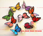 3D Butterflies Wall Art Decal Vivid Artificial Magnet Sticker Home Shop Decor