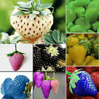 100Pcs/Pack Rare Delicious Strawberry Seeds Grow Plant Fruit Seeds Home Garden