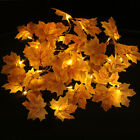 10/20 LED Christmas Maple Leaves Tree Fairy Party String Lights Lamp Xmas 2.2M