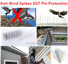 100% Anti-Bird Spikes Stainless Pin Wall Fence Metal Pigeon Protection Deterrent