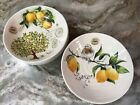 Large Pasta Bowls Ceramica Cuore Lemons With Bird Or Tree. Set Of 4. New.