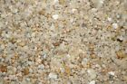 Lutema Decorative Pebble Rocks Different Colors and Sizes