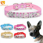 Bling Dog Cat Pet Personalized Leather Name Collar Chihuahua Yorkie Terrier