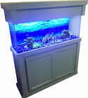 Tucker Murphy Pet Plato Aquarium Cabinet