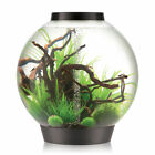 biOrb 4 Gallon Classic Aquarium Bowl
