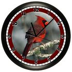 DECORATIVE RED MALE CARDINAL WALL CLOCK KITCHEN DECOR GIFT BIRD QUIET SWEEP MOTO