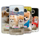 OFFICIAL BOO-THE WORLD'S CUTEST DOG PLAYFUL HARD BACK CASE FOR MOTOROLA PHONES 1