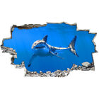 Wall Stickers Great White Shark Ocean Cool Smashed Decal 3D Art Vinyl Room BB769