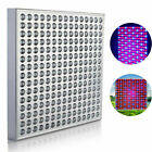 600W LED Grow Light for Indoor Plants Growing Lamp 225 LEDs Full Spectrum Lights. Buy it now for 26.99