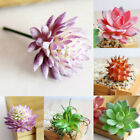 New 1x Fake Artificial Flowers Succulent Plant Potted Home Wedding Decoration