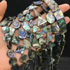 Natural Color Abalone Shell Loose Beads Jewelry Making Craft Top Stone Charm