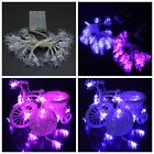 Halloween Led String Spiders Lights Party Home Window Decor Fairy Lights