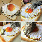 Pet Dog Cat Sleep Blanket Mat Fried Egg Shaped Cute Quilt Pad for Pets Puppy NEW