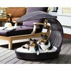 The Refined Canine Outdoor Dog Chaise Lounger