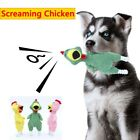 Cleaning Sound Squeaker Screaming Chicken Puppy Interactive Pet Toys Bite Toy