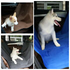 For Dog Cat Waterproof Rear Back Pet Car Seat Cover Carriers Protector Trunk Mat