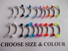 CHOOSE COLOUR & BAR LENGTH 6mm,8mm10mm,UV BALL OR SPIKE END, EYEBROW/TRAGUS BAR,