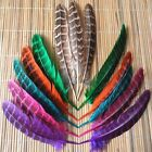 Wholesale natural pheasant tail feathers 10-15cm/4-6inch  6color choices