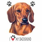 Dachshund Love T Shirt Pick Your Size