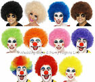 High Quality Curly Afro Fancy Dress Wig 60s 70s 80s Disco Clown Mens Ladies