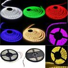 300 LED SMD 5M 3528 Cool/Warm White Blue Red Green Waterproof Light Strip Lamp