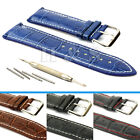 Mens Leather Watch Strap Band + Tool Spring Bar Pins 18mm 20mm 22mm 24mm