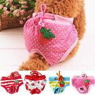 Female Pet Dog Puppy Diaper Panty Physiological Saintary Pants Strawberry Nappy