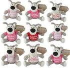 Boofle Bears Plush Gifts - T Shirt Bear - Soft Toy Mum Auntie Nan Sister & More