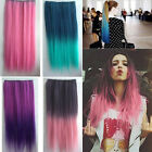 Your Own Style Lady Rainbow Wig Hair Extensions Straight High Quality