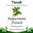 PEPPERMINT (FRENCH) Essential Oil (Mentha piperita) ~ 100% Pure Oils ~