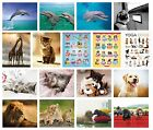 ANIMALS & PETS - Mini POSTERS (Official) 40x50cm - Large Range (Wall/Room/Cute)
