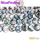 """Coin Natural Abalone Shell Gemstone Jewelry Making Loose Beads15"""" 6,8,10,12,14mm"""