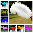 Wholesale 1-20pcs OSTRICH FEATHERS 8-18inch/20-45cm Party Wedding Chrismas Decor