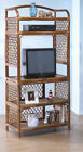 Windsong Large Rattan Entertainment Center