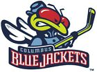 Columbus Blue Jackets #9 NHL Team Logo Vinyl Decal Sticker Car Window Wall $13.86 USD on eBay