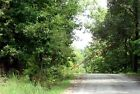 NO RESERVE!!! NORTHERN ARKANSAS, UNRESTRICTED, WOODED LOT, NEAR LAKES, ELECTRIC!